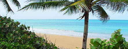 puerto rico einsamer strand